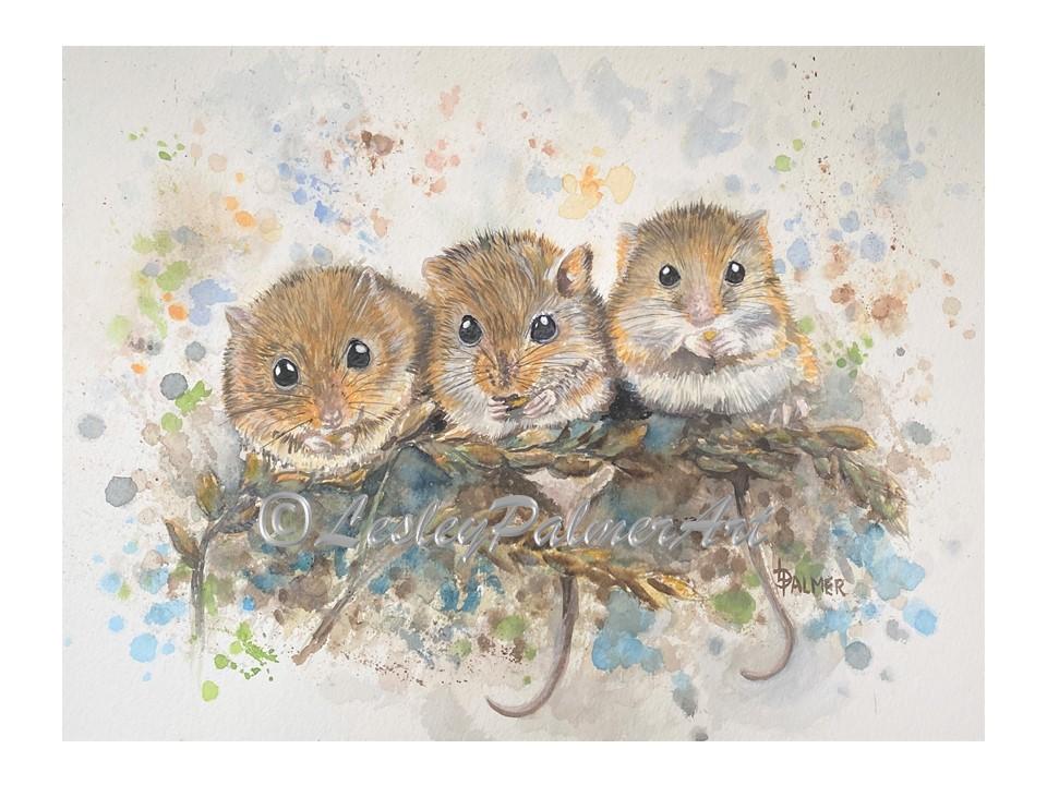 Three Mouseketeers