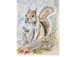 Smokey Squirrel