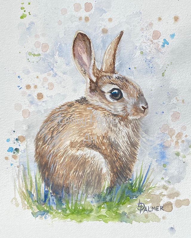 'Baby Bunny' in watercolours , finished!