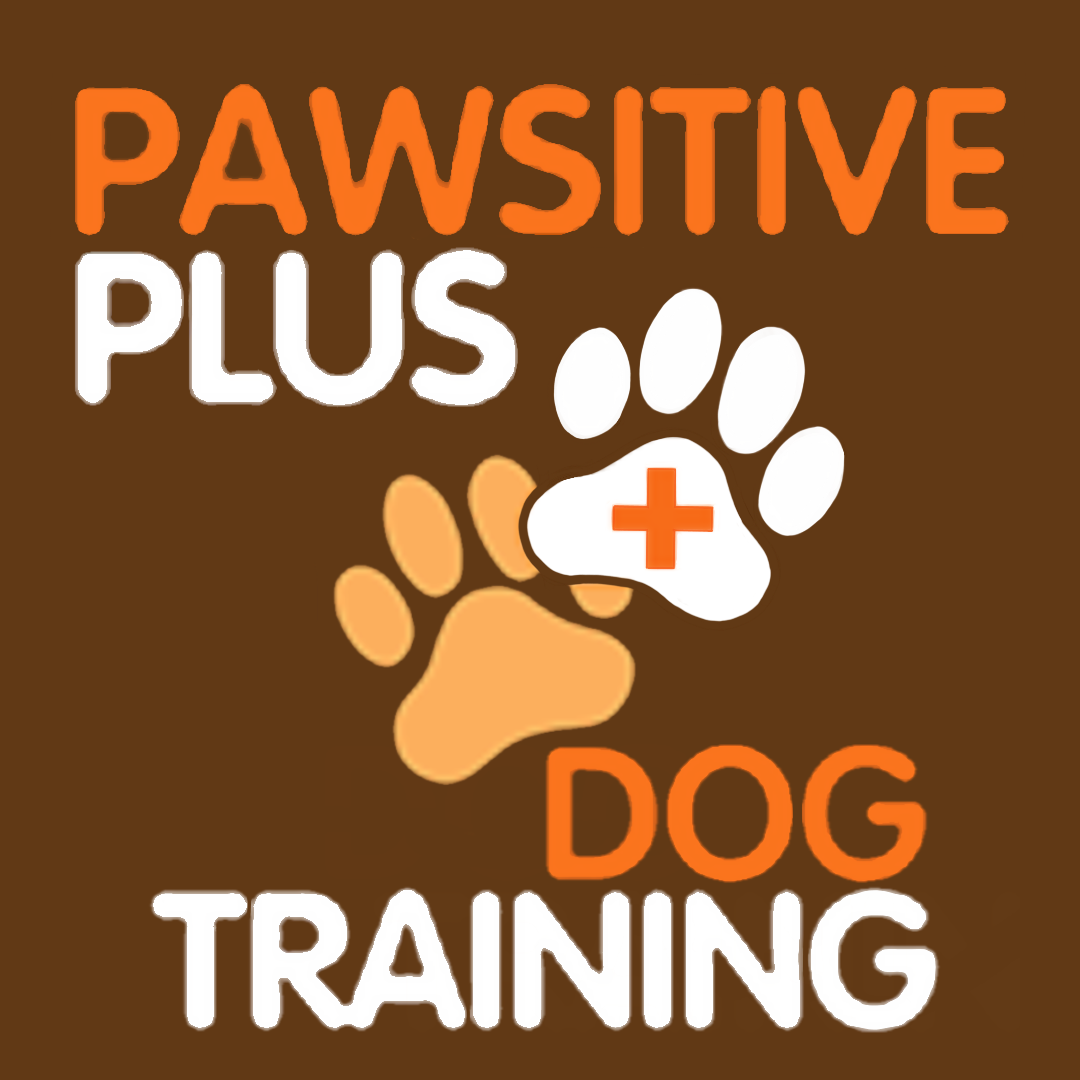 Home | Oakville Dog Training | Pawsitive Plus Dog Training