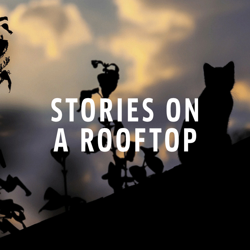 Stories on a Rooftop