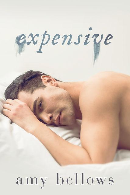Expensive-AmyBellows-f (1).jpg