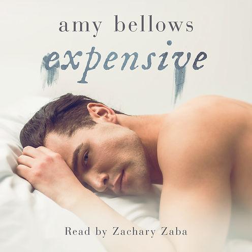 Expensive-AmyBellows-Audiobook.jpg