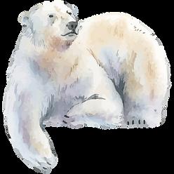 bear1-02.png