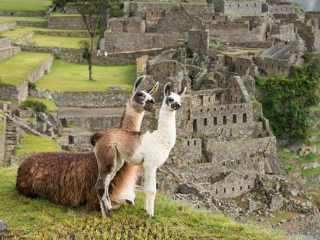 HAYDİ BÜTÜN AİLE PERU'YA!