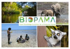 Kenya : lancement du centre régional de ressources pour les aires protégées et la biodiversité