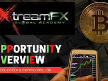 XtreamFX Global Academy : éducation, trading en live, formation sur le Forex, cryptomonnaie et e-Com