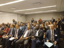 La BDEAC aux côtés des Etats de la CEEAC à New-York pour la protection des forêts du Bassin du Congo