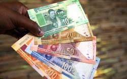 Afrique du Sud / Relance de l'économie : le pays met sur pied un conseil national
