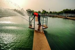 Distribution de l'eau : les conséquences de l'ouverture au privé