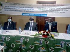 Le mercure est interdit au Cameroun : Un Plan d'Action Nationale est en cours d'élaboration.