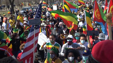 Demonstration of the Ethiopian and Eritrean Community in Washington to denounce the interference