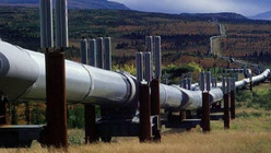 Tchad – Cameroun / Pipeline : N'Djamena dément la rumeur sur la vente de ses parts à Yaoundé