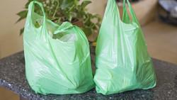 Avec la Tanzanie, un 34ème pays africain bannit les sacs en plastique