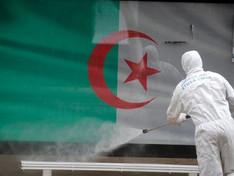 Algérie / Covid-19 : le pays approuve un plan de réouverture partielle des frontières en juin