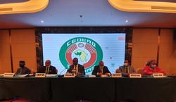 La CEDEAO et  l'Union Africaine valident le scrutin présidentiel du 18 octobre 2020 en Guinée