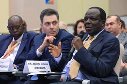 Russia–Africa Economic Forum Addresses International Cooperation in Healthcare