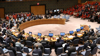 ETHIOPIAN GOVERNMENT TRAPPED IN INTERNATIONAL LIES ON TIGRAY CRISIS - UN TEAM