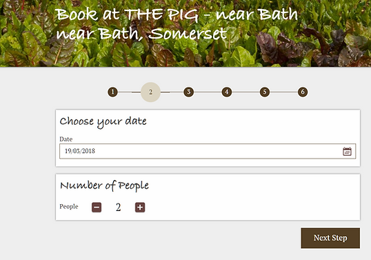 Screen shot of custom online booking widget