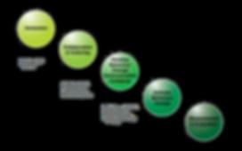 Sixth Sense Intervention Process - Copyright Exp Group