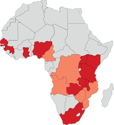 Exp Groups African Footprint