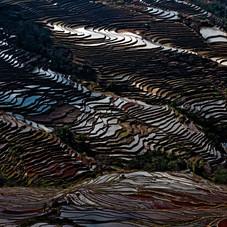 yuanyuang230119-392-editjpg