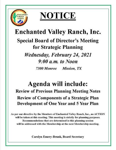 Planning Meeting Feb 24 2021.jpg