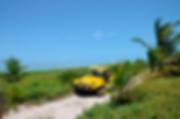 passeio-de-buggy-31-7974efd6d603ec154615