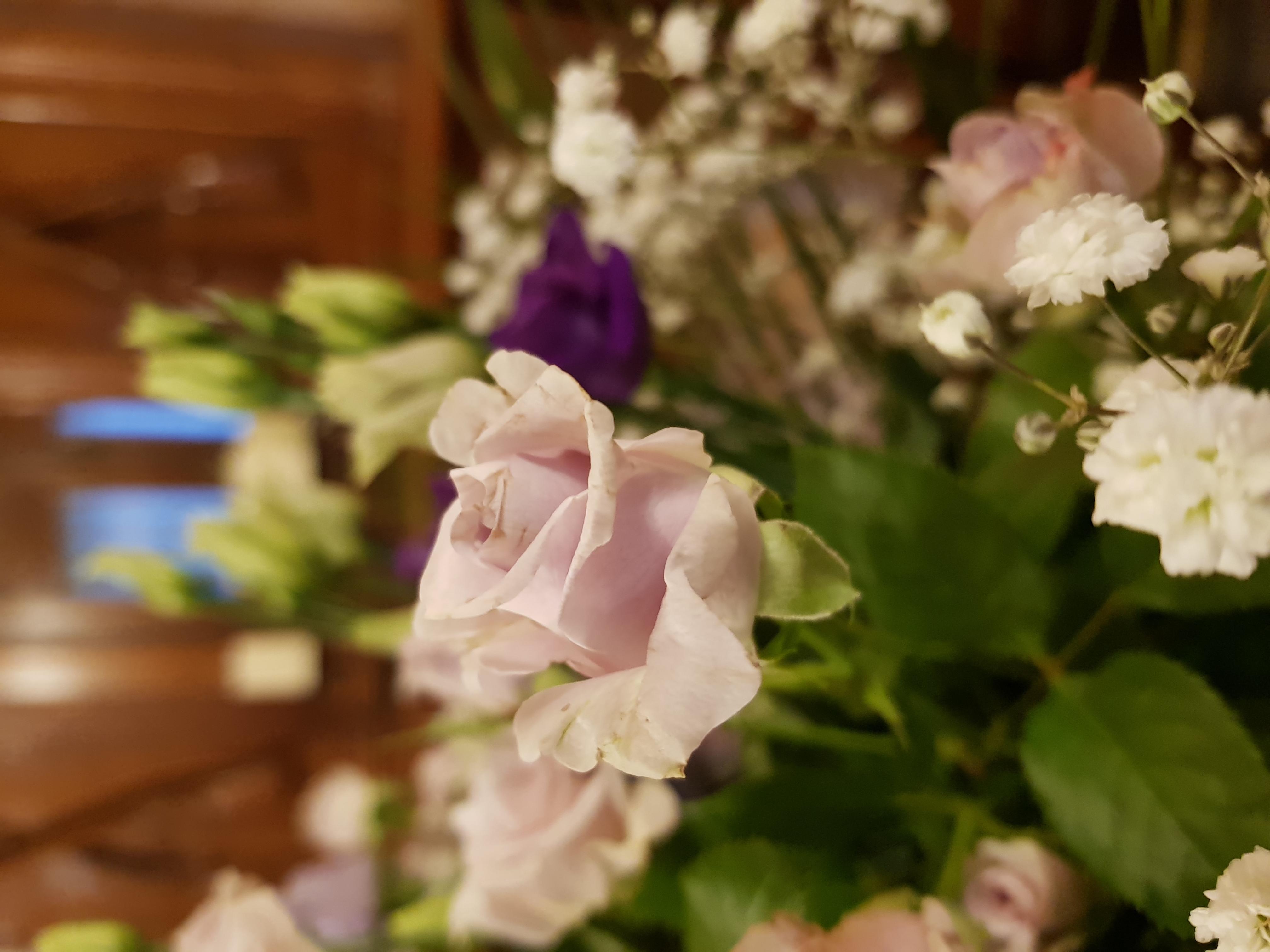 Autre_variation_bouquet_entrée