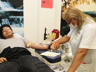 Donar sangre fortalece la médula ósea