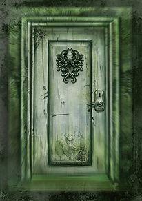 WIX DOOR IMAGE HL A4.jpg