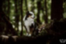 CAMIGRAPHIE-Mylène_&_Loona-WEB-5.jpg