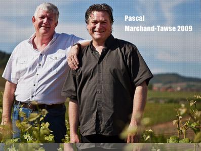勃根地新興膜拜酒,現貨稀有釋出,Pascal Marchand Tawse 2009年份限量優惠中