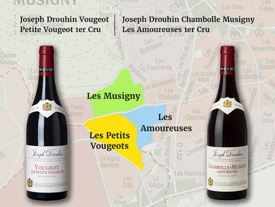 緊鄰Les Amoureuses愛侶園💘,價格不到一半,Joseph Drouhin酒莊私藏酒Vougeot Petite Vougeot 1er Cru