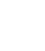Snowflake ICES Winter Camp 2018