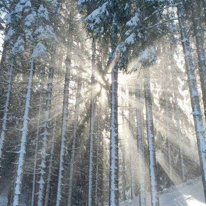 Fira ljusets återkomst med Midvinteryoga i Stockholm