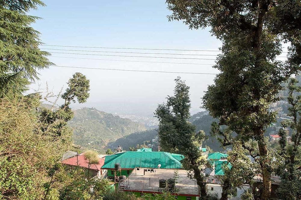 Utsikt från yogashalan i Trimurti Garden