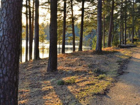 När naturen vaknar: två tips på upplevelser!