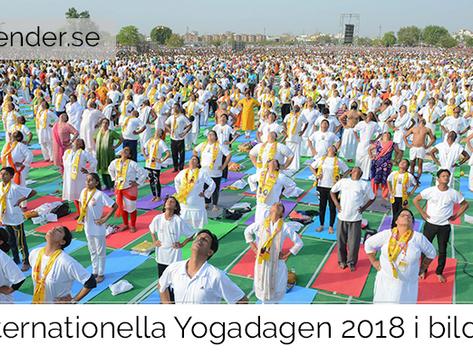Internationella Yogadagen 2018 i bilder