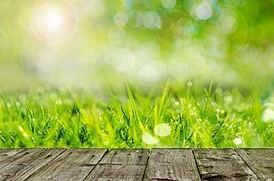background-316552_1280.jpg