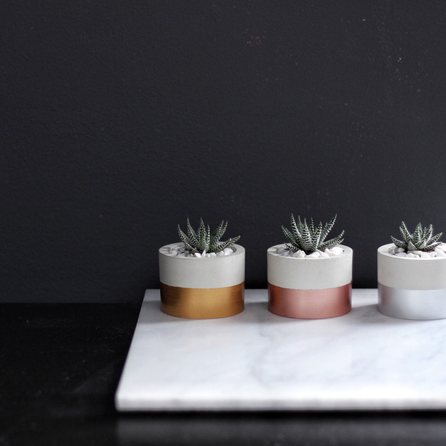 Cylinder Concrete Planter
