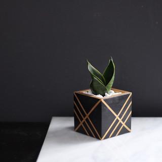 Black + Gold Cube Concrete Planter