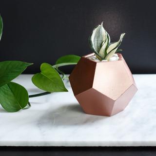 Rose Gold Concrete Dode Planter