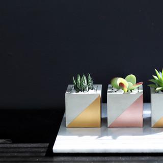Cube Concrete Planter