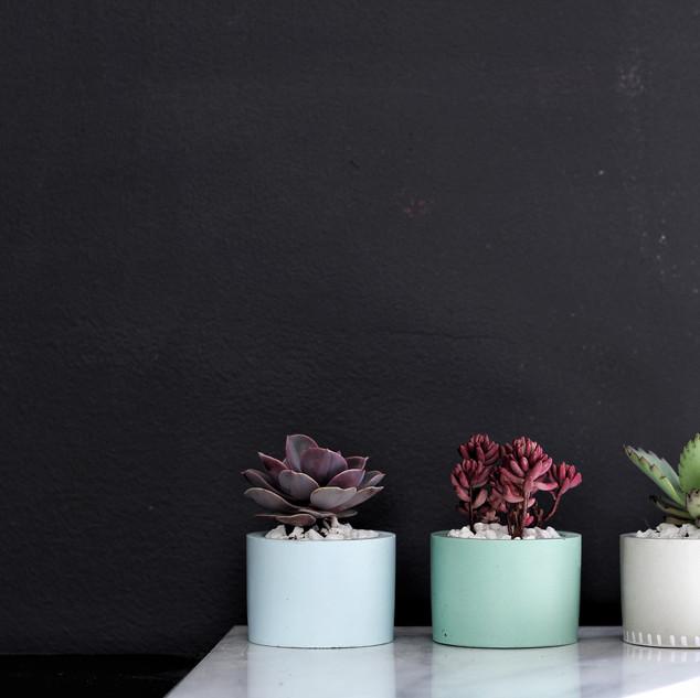 Pastel Cylinder Concrete Planter