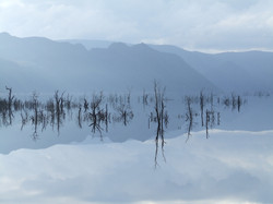 Reflections at Lake Macintosh