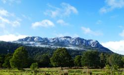 Mt Farrell
