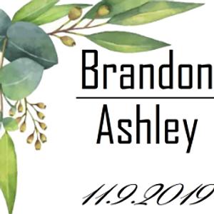 Brandon and Ashley