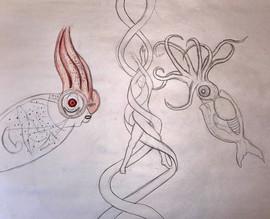 Ribbon Squid.jpg
