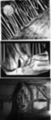 7-10 Vestigial storyboard.jpg